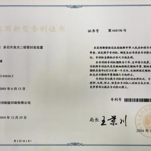 B10-中國實用新型專利 668198號